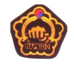 Patch-Hapkido